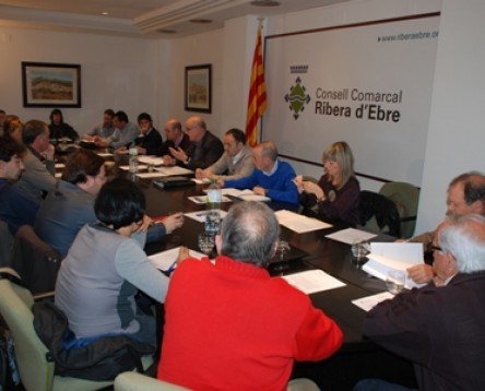 Imatge de la noticia El ple del Consell Comarcal aprova la creaci del consell supramunicipal de poltiques socials de la Ribera dEbre