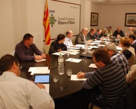 Imatge de la noticia El Consell Comarcal de la Ribera d'Ebre aprova les bases de subvencions pel reequilibri territorial comarcal 2014