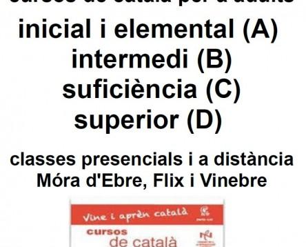 Imatge de la noticia A partir del gener de 2015, el Servei Comarcal de Català de la Ribera d'Ebre ofereix diversos cursos de llengua catalana per a persones adultes