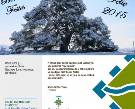 Imatge de la noticia El Consell Comarcal de la Ribera d'Ebre us desitja bones festes!!!