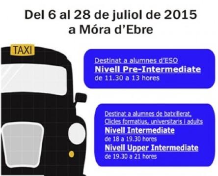 Imatge de la noticia El Consell Comarcal de la Ribera d'Ebre organitza un curs intensiu d'anglès