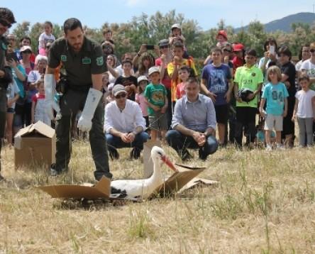 Imatge de la noticia L'esport i les activitats per a infants protagonitzen la II Cursa i la XIII Festa de les Cigonyes a la Reserva Natural de Sebes de Flix