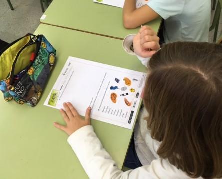 Imatge de la noticia El comerç de la Ribera d'Ebre es promociona a les escoles de la comarca entre els més petits