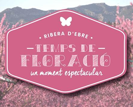 Imatge de la noticia La Ribera en flor obre la temporada turística de la Ribera d'Ebre, amb activitats per gaudir de l'espectacular paisatge a peu i en bici o des del riu