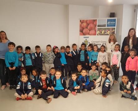 Imatge de la noticia Alumnes de l'escola Lluís Viñas de Móra d'Ebre visiten el Consell per conèixer el seu funcionament