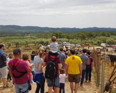 Imatge de la noticia Gairebé 1.500 persones han visitat explotacions agràries de la Ribera d'Ebre amb el Benvinguts a Pagès