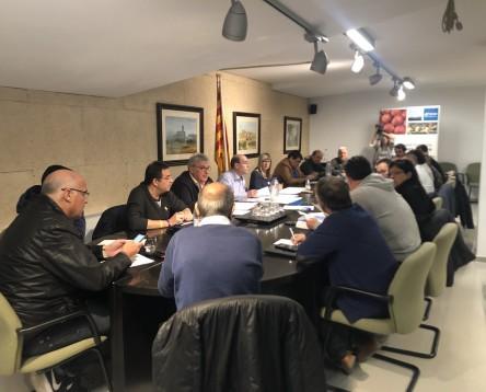 Imatge de la noticia El Consell promou la contractació d'entitats de la Ribera d'Ebre per fer activitats culturals a la comarca