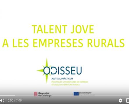 Imatge de la noticia Convocats nous ajuts per a empreses de la Ribera d'Ebre per contractar joves universitaris en pràctiques