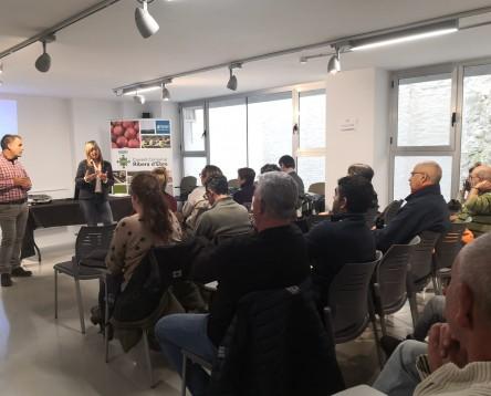 Imatge de la noticia El Consell Comarcal de la Ribera d'Ebre contracta 28 persones a través de les polítiques actives d'ocupació