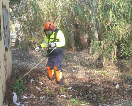 Imatge de la noticia La Ribera d'Ebre millora entorns naturals i urbans a través d'un Pla d'Ocupació de la Diputació