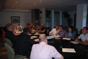 consell alcaldes ribera d'ebre