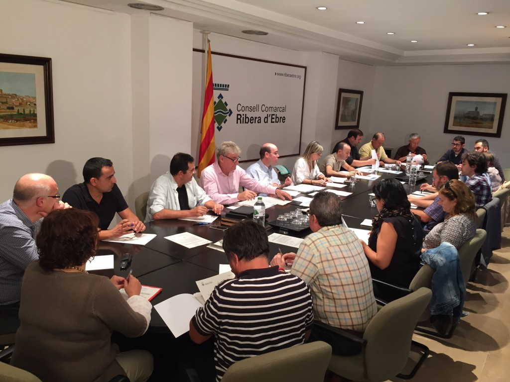 foto Ple Conselll Comarcal Ribera d'Ebre
