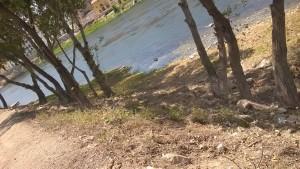 riba riu mora la nova
