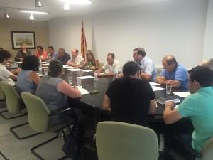 Imatge del darrer Ple comarcal, on es van aprovar les dues cartes de compromís amb els projectes territorials.