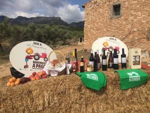 Vi, oli, fruita dolça, seca, carn de vacum, productes ecològics, formatges i mel, productes estrella de la Ribera.