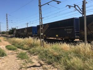 descarrilament tren ascó