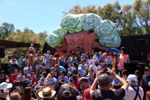 Festa cigonyes 2017