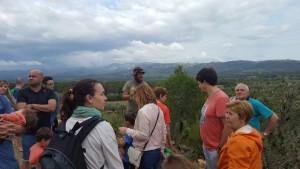 Visitants passejant per l'explotació bovina de la Serra de Cardó.