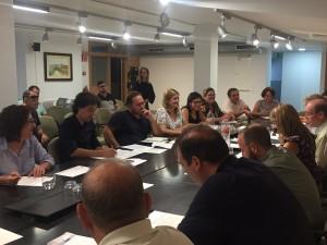Ple Consell Comarcal Ribera d'Ebre