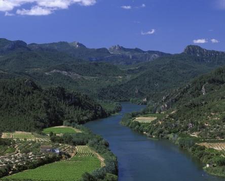 Imatge de la noticia La Ribera d'Ebre participarà en un cicle de debat sobre 'Transició energètica i territori'