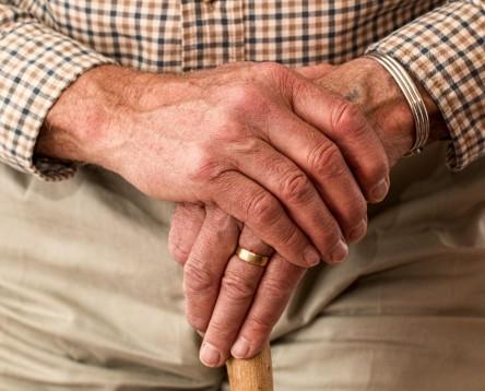 Imatge de la noticia La Ribera d'Ebre treballa per implementar els acords del 8è Congrés de la Gent Gran